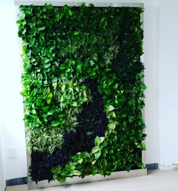 Artificial Vertical Garden in Delhi